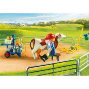 Playmobil 70132 Óriás farm silóval (új)